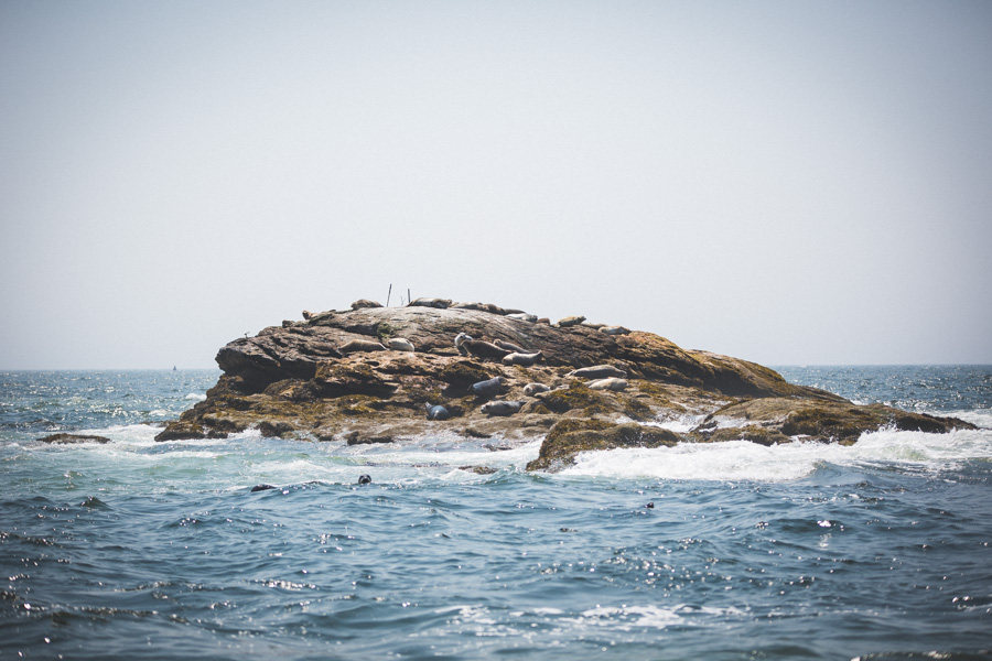 Maine 2014 (4 of 52)