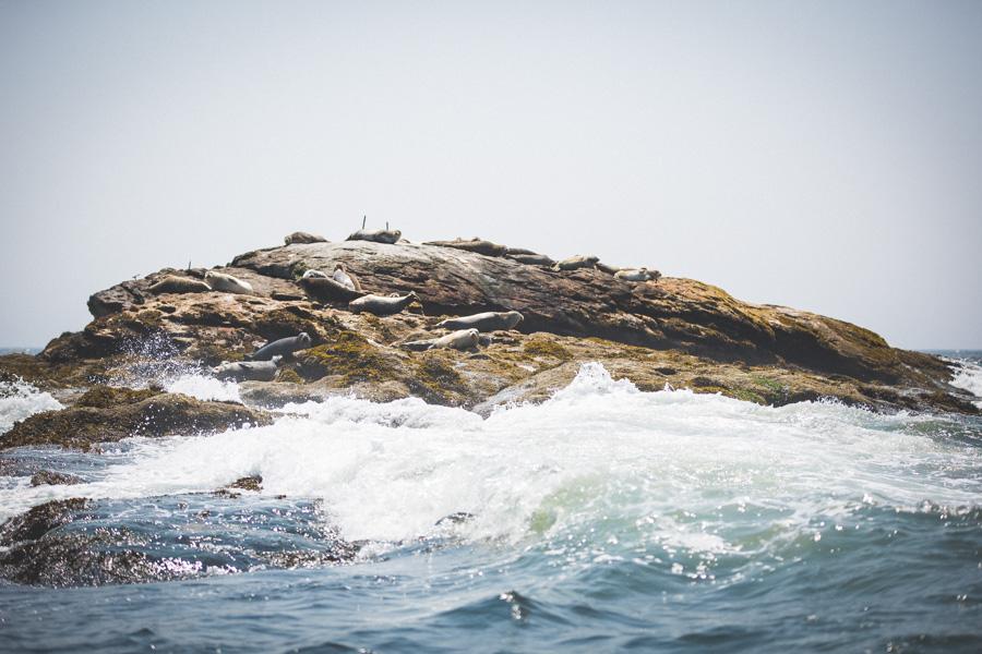 Maine 2014 (6 of 52)