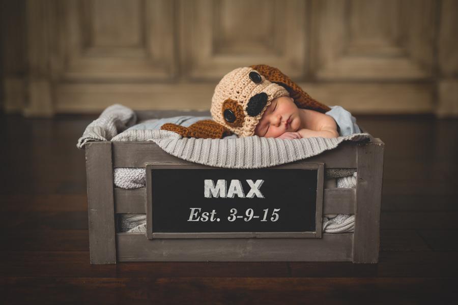 Meet Max (13 of 13)